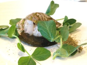 Red snapper, laing, cockles, shaved squid