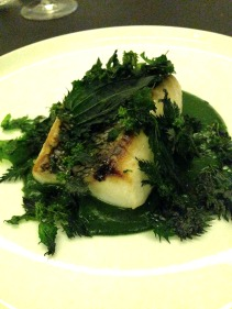 Seared Striped Trumpeter with nettle sauce