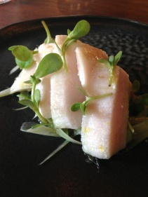 Swordfish belly, fennel, herb oil