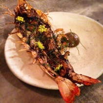 A fab meal at Fleet, Brunswick heads! King prawn, black garlic, bronze fennel