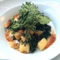 Baked potato gnocchi, taleggio, local oyster mushrooms, kale