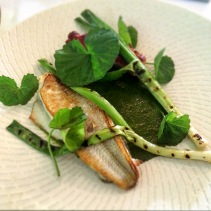 Sand whiting, caramelised octopus, warrigal greens, grilled baby leeks, centella leaves