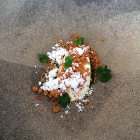 Towri Farm Eweghurt, brioche crumble, myrtle oil, sheep sorrel