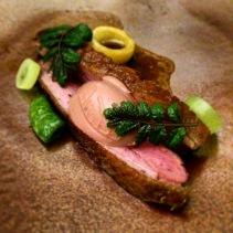 Dry-aged duck, foie gras, apricot marmalade, kinome