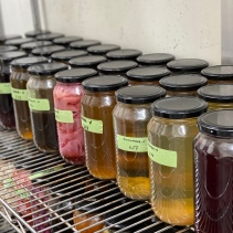 House-made vinegars