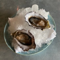 Gazander oysters with red wine and shallots at cellar door